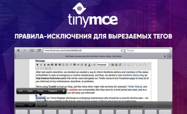 TinyMCE вырезает теги - исключения для тегов TinyMCE